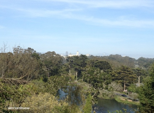 View From Strawberry Hill Golden Gate Park