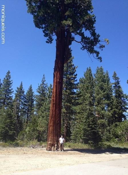 Kyle Abrahamsen Sugar Pine Lake Tahoe